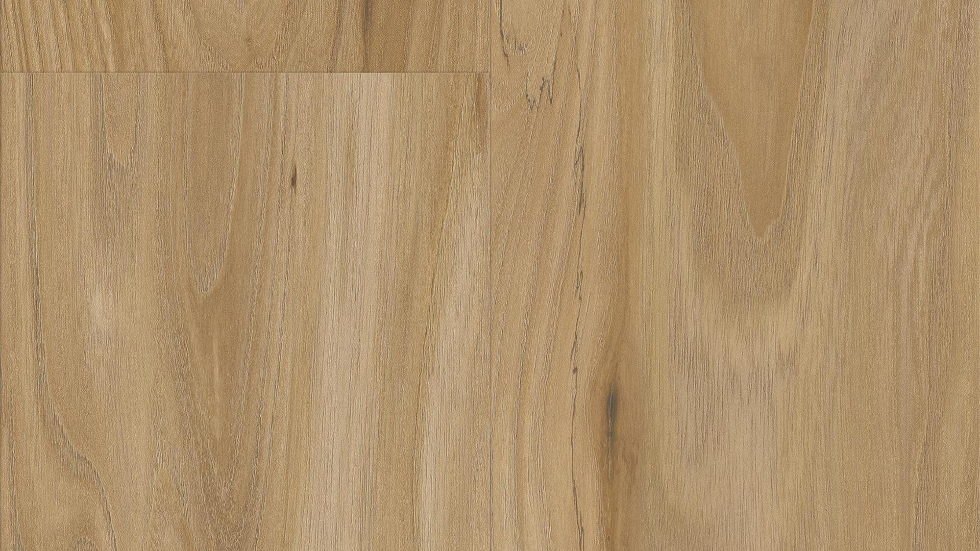 immagine decorativa Laminate flooring Easy Touch O102 Olmo Landhouse LM-S