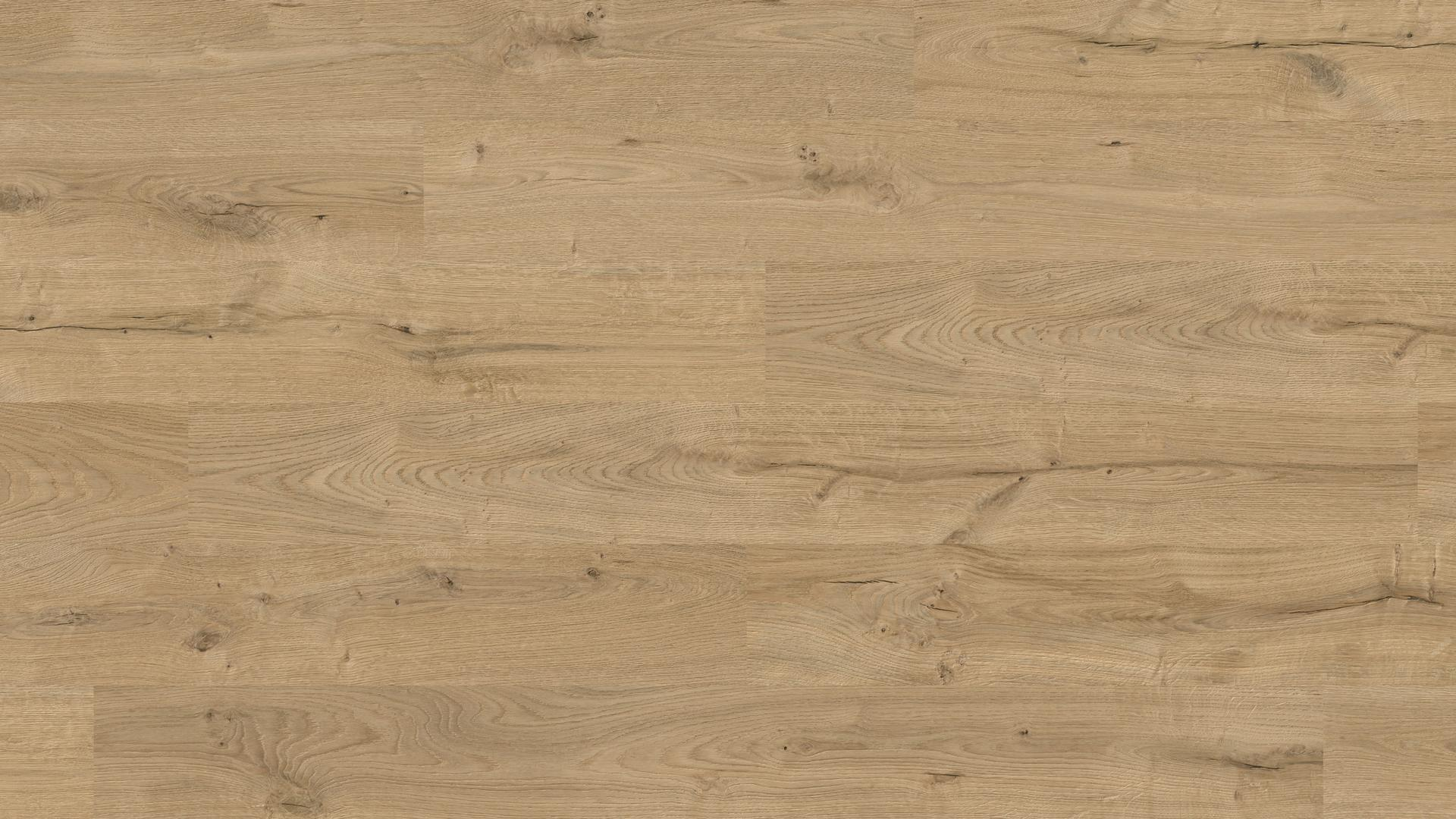 superficie di posa Laminate flooring Easy Touch O270 Rovere Wild HG